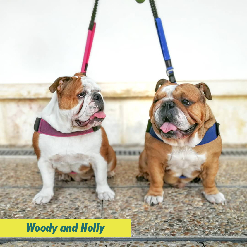 Woody & Holly